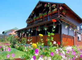 Pension Casa Cu Flori, Crisan