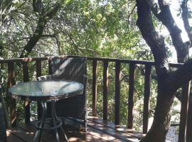 Eretz Hagalil - Land of Galilee, Amirim
