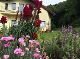 Das gelbe Haus, Sankt Christofen