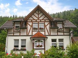 Apartment Stühlingen II, Lausheim