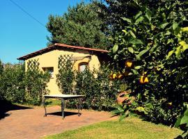 Al Villino di Letizia, Lucca