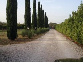 Resort Riminino, Case Riminino