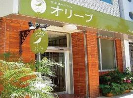 Ishigakijima Hotel Olive, Ishigaki Island