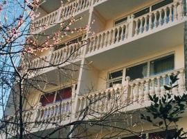 Vizit Hotel, Lazarevskoye
