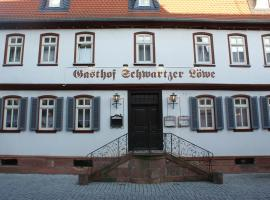 Hotel Schwartzer Löwe, Babenhausen