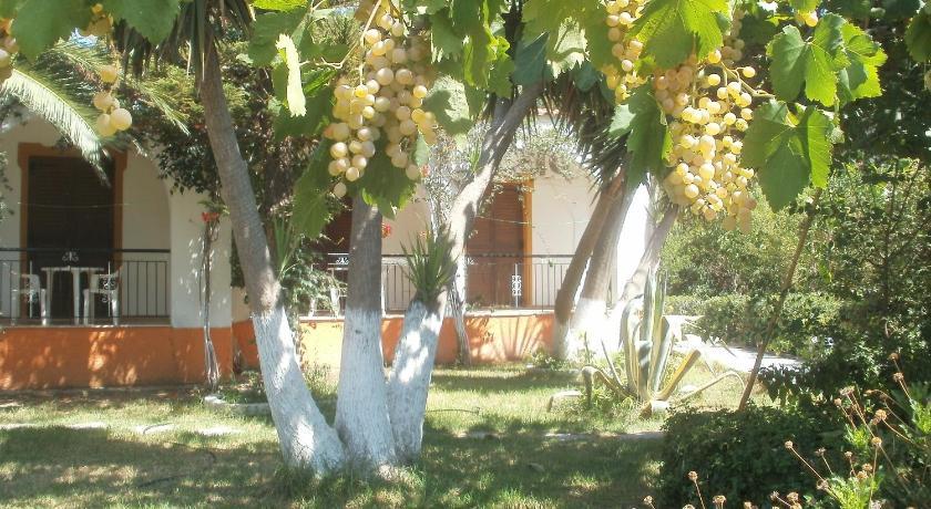 Studios Dimitris, Hotel, Ammoudia, Punta, 37002, Greece