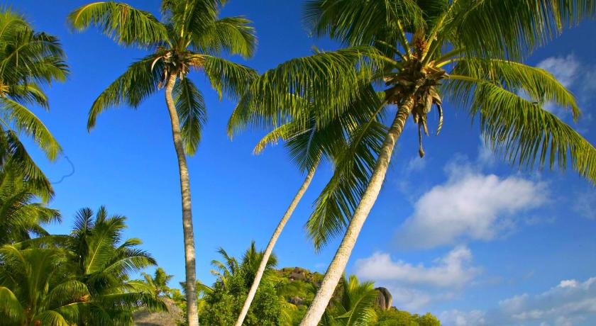 Paradise Sun Hotel Baie Sainte Anne Seychelles