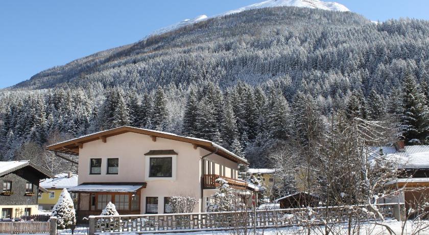 Haus Burgman Appartement - Ferienwohnung (Bad Gastein)