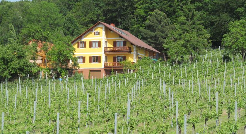 Appartement Weingut Schoberhof (Bad Gleichenberg)