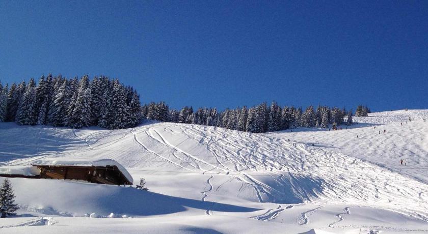 Alpine Deluxe Chalet Wallegg-Lodge (Saalbach-Hinterglemm)