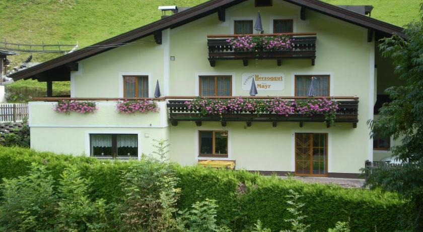 Pension Herzoggut (Zell am See)
