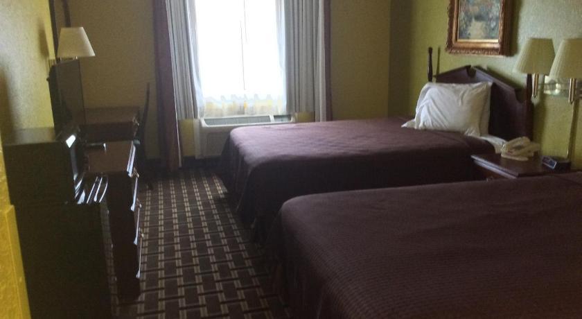 Dorel coil bed futon