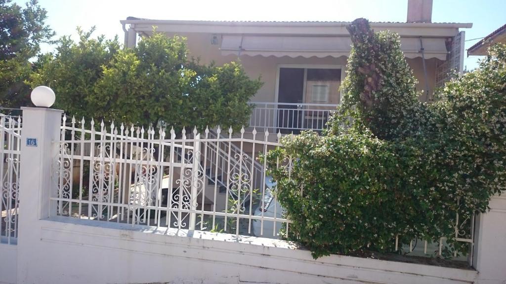 Sadaf`s Apartment
