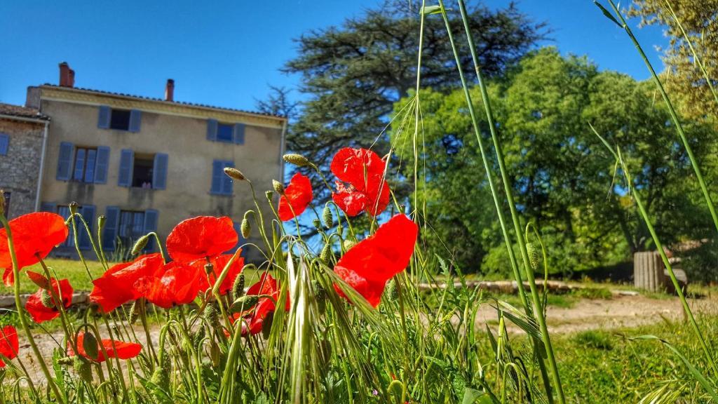 Chambres d 39 h tes le domaine saint martin chambres d 39 h tes - Chambre d hote besse sur issole ...