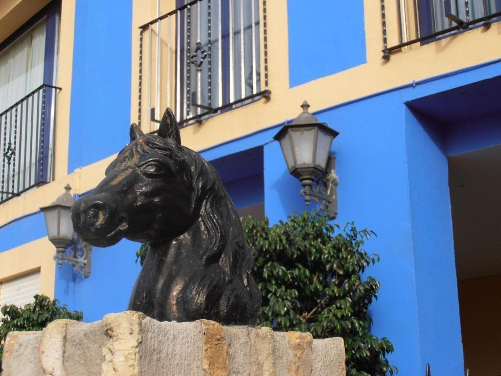 Hotel caballo negro puerto real book your hotel with viamichelin - Hotel caballo negro puerto real ...