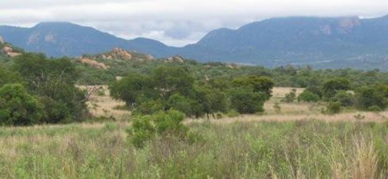 Bendito Ranch