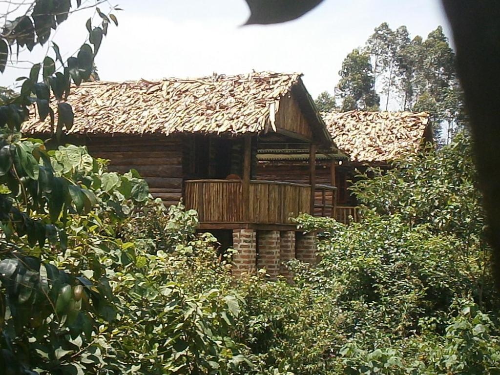 Ruhondeza Lodge