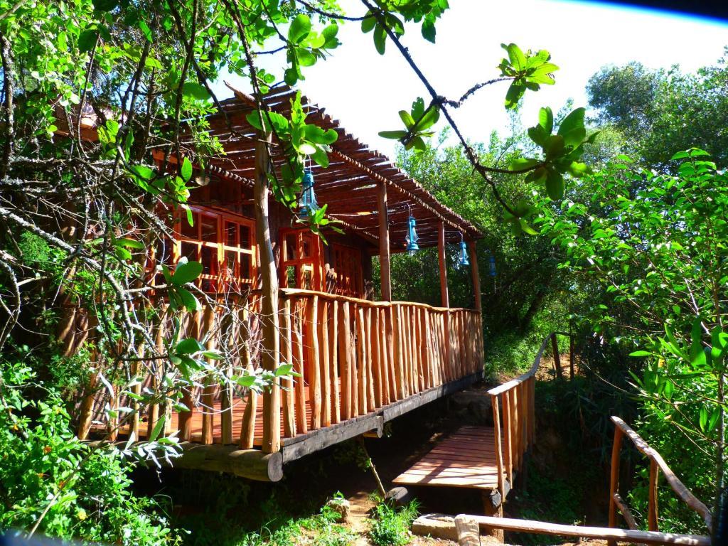 <div data-et-view=NAFQCDCcdXDPdFO:1</div Colobus Cottages