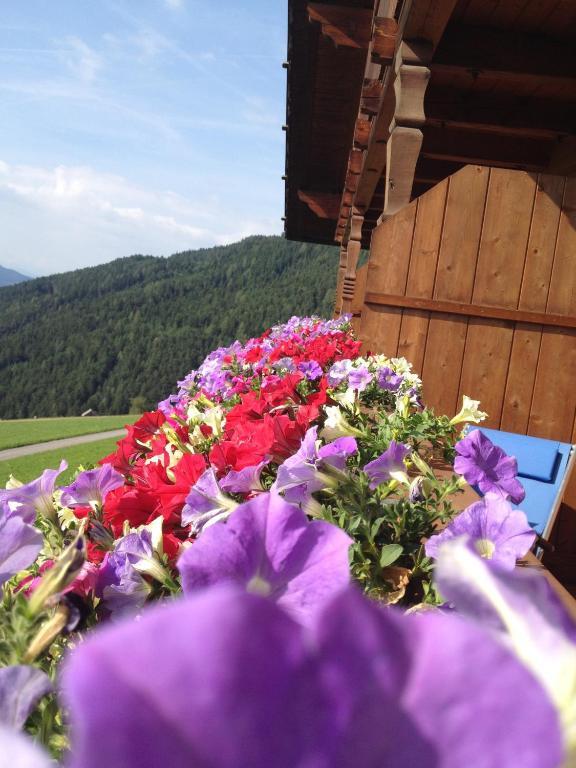zehrehof brixen prenotazione on line viamichelin