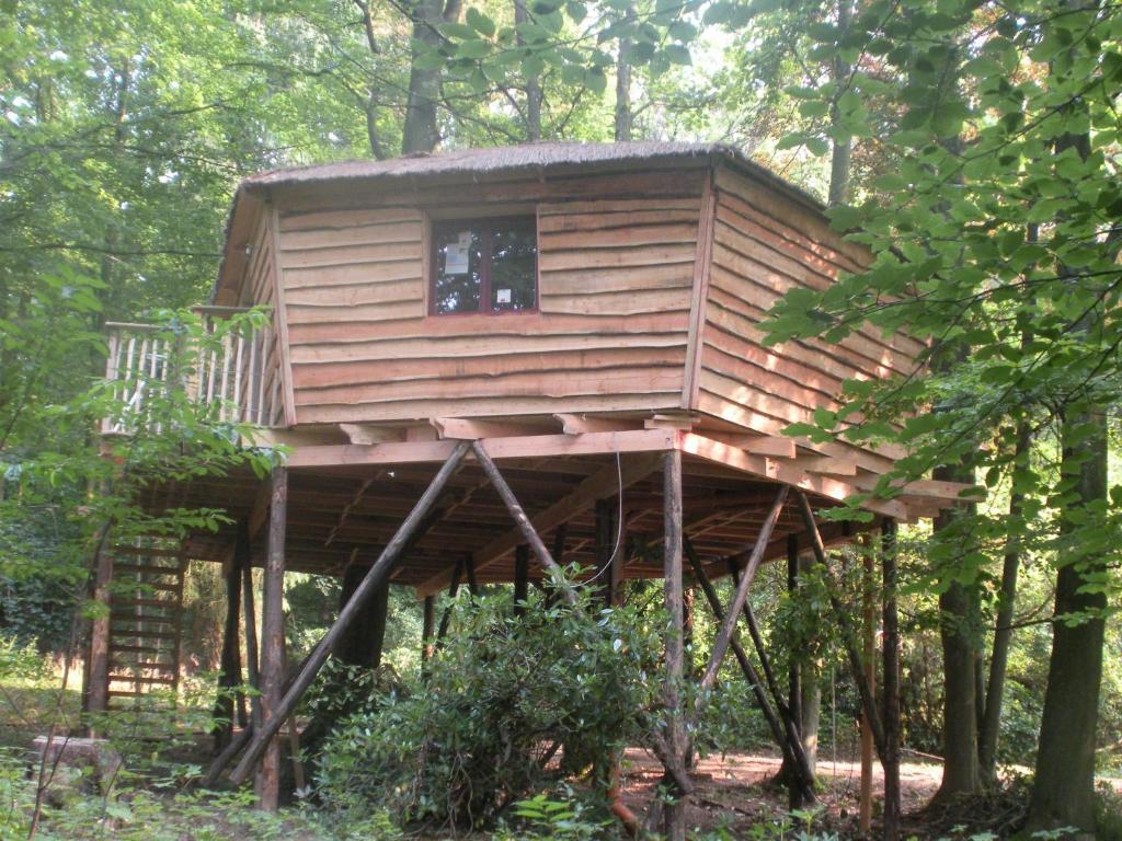 B b cabane bois dormant belgique spa - Cabane en bois dans les arbres ...
