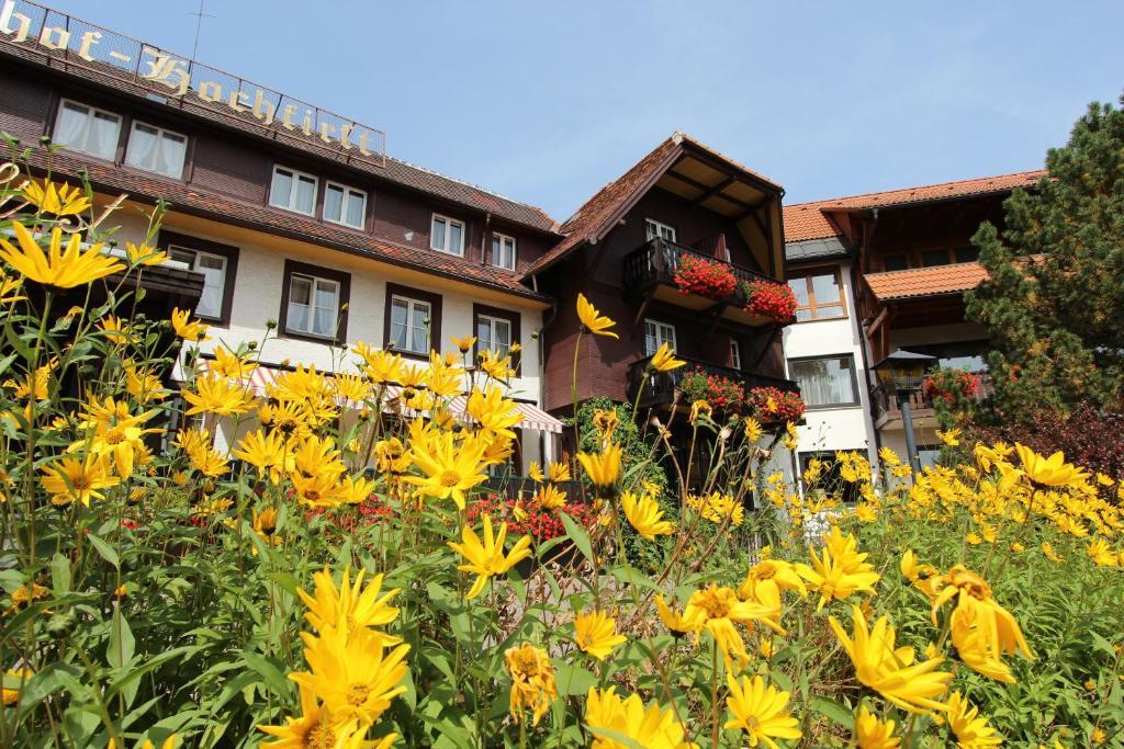 Hotel Hochfirst Garni Lenzkirch