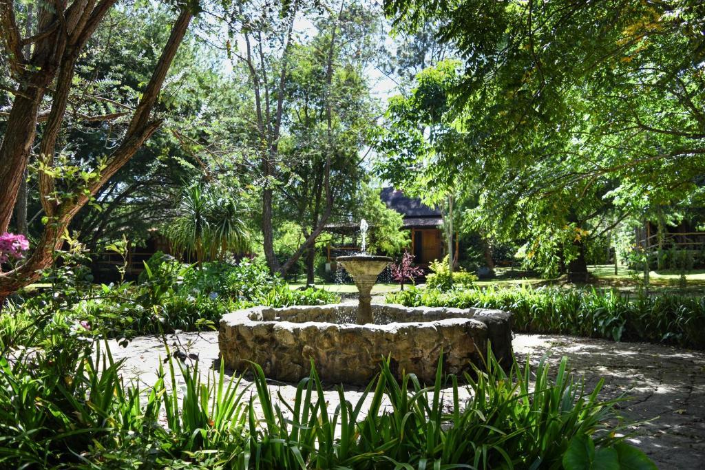 Hotel y resort quinta del sol r servation gratuite sur for Jardin quinta del sol