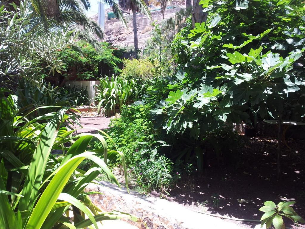 el jardin mog n informationen und buchungen online