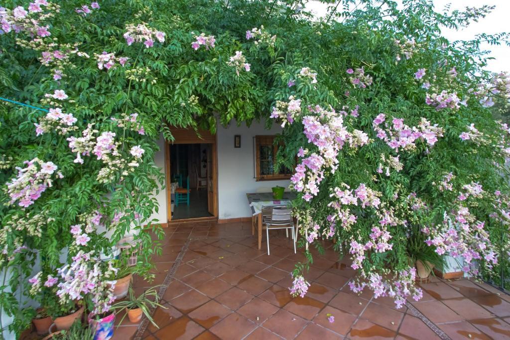 La Rana Verde Casa Rural (España Los Romeros) - Booking.com