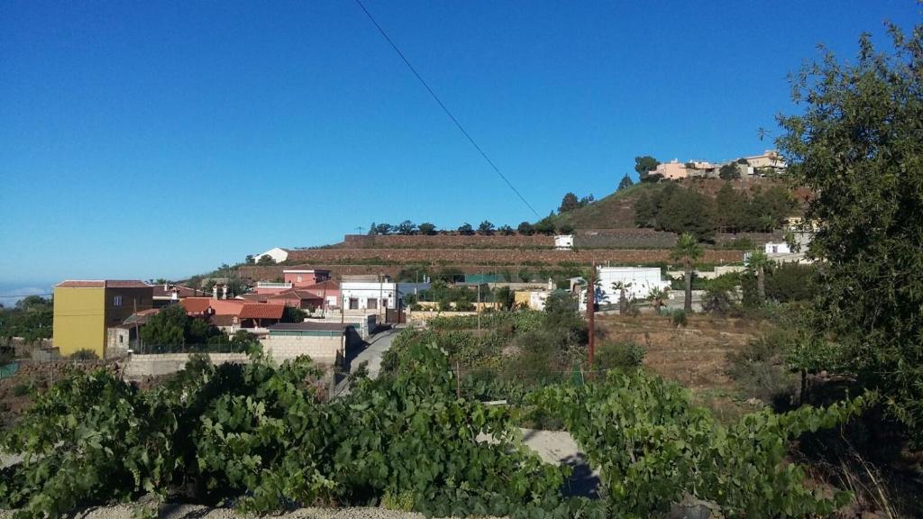 Casa de campo Casa El Horno (España Granadilla de Abona ...