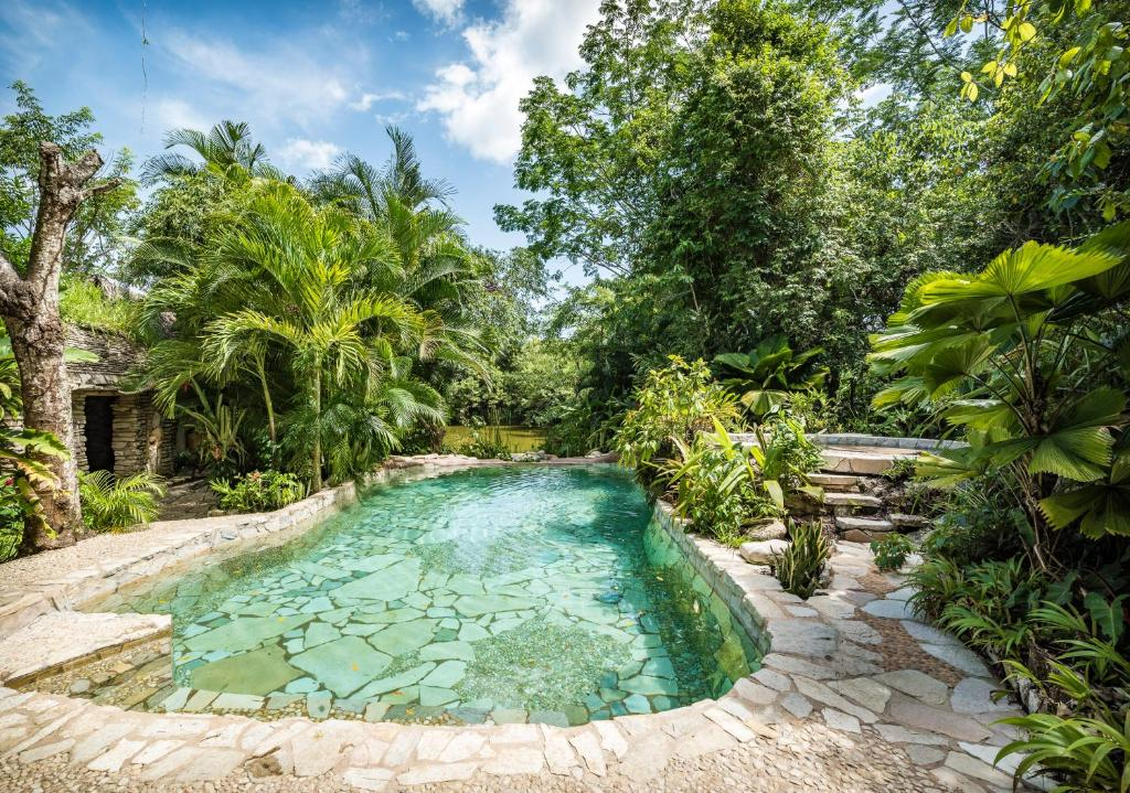 Boutique Hotels In Palenque