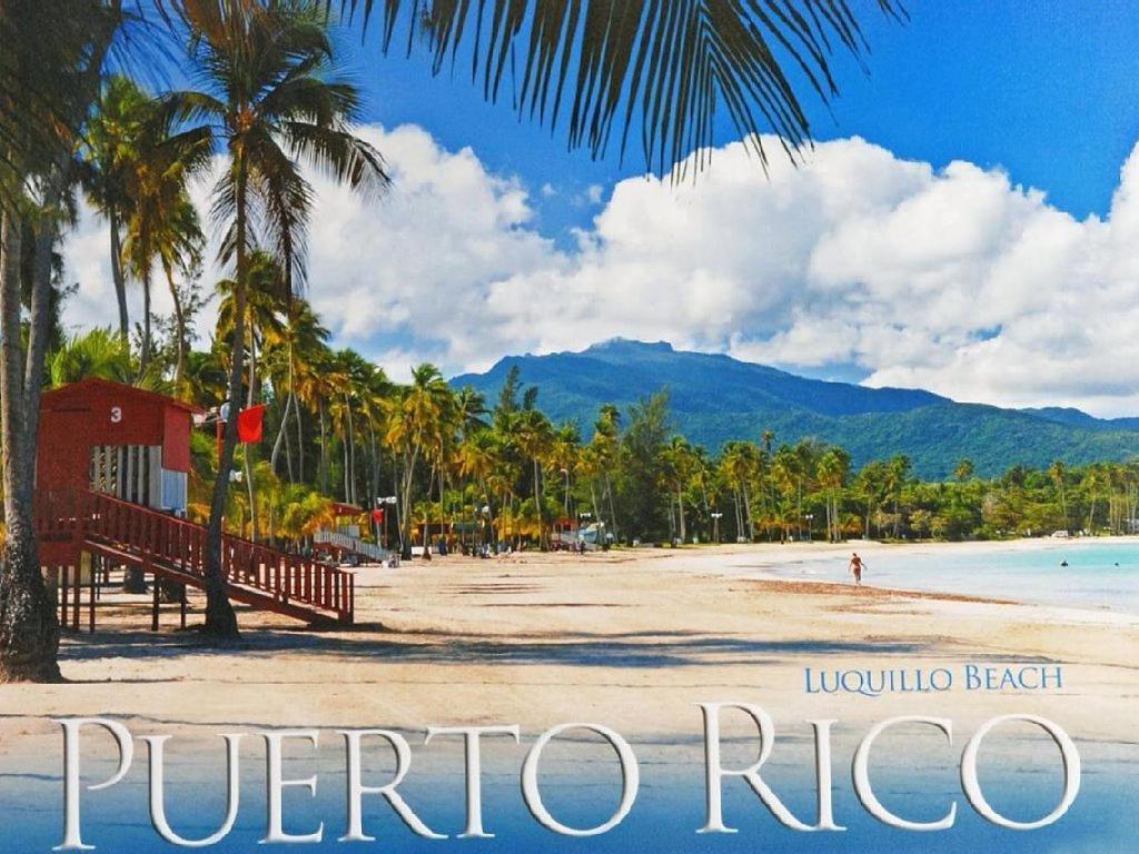 casa de vacaciones luquillo beach getaway puerto rico. Black Bedroom Furniture Sets. Home Design Ideas
