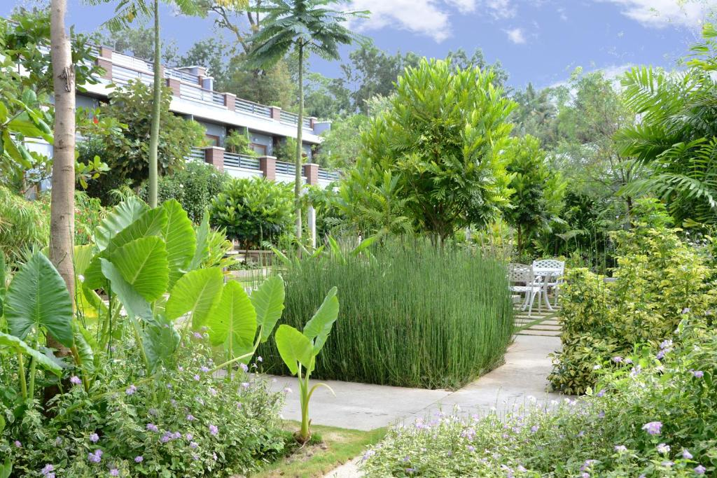 Purple Palms Resort And Spa