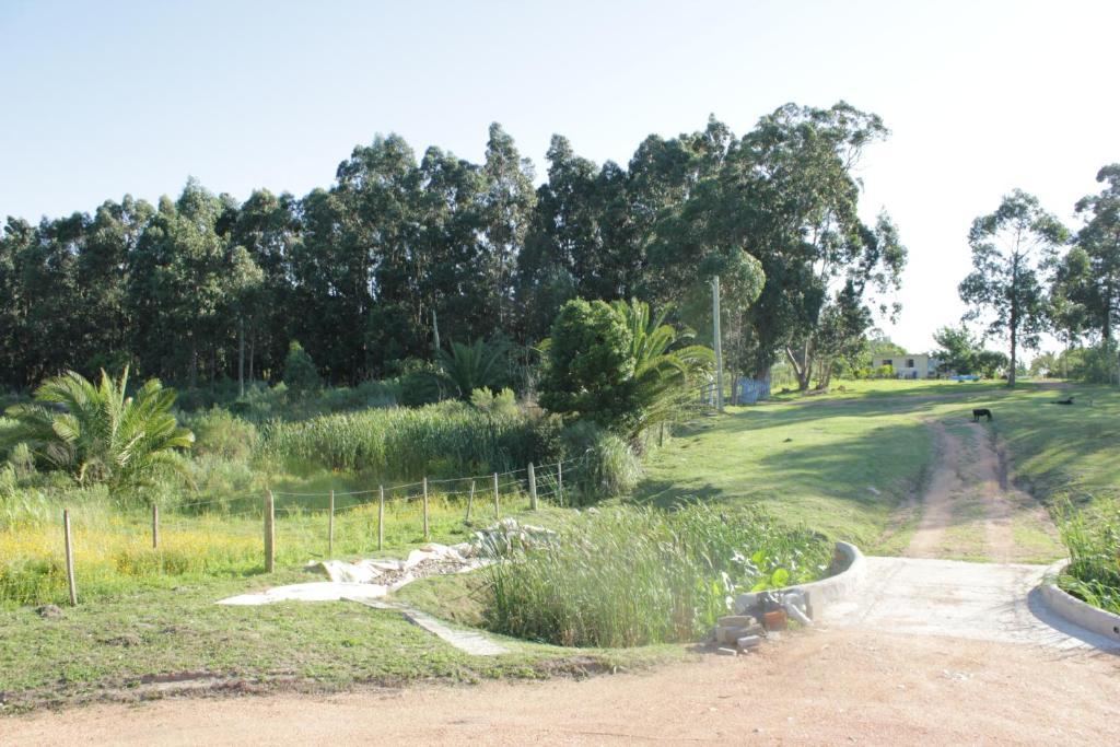 Rincon del diario maldonado reserva tu hotel con for Jardin 4 maldonado