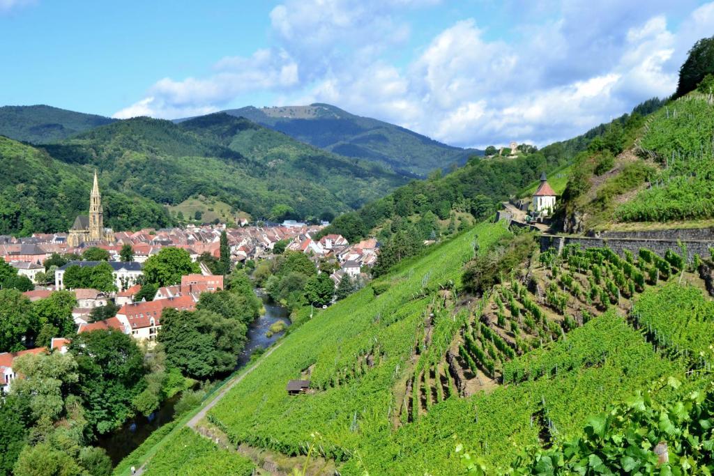 Chambres d 39 h tes la charmaie chambres d 39 h tes husseren wesserling - Chambre d hote route des vins bourgogne ...