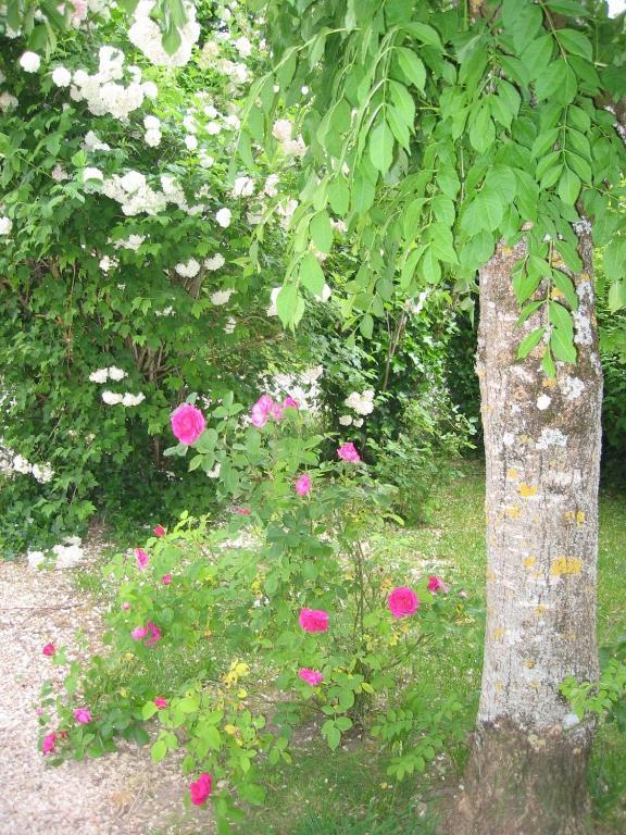 le jardin de rose r servation gratuite sur viamichelin