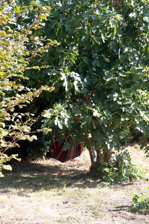 Aux bois flott s talmont saint hilaire viamichelin for Aux bois flottes