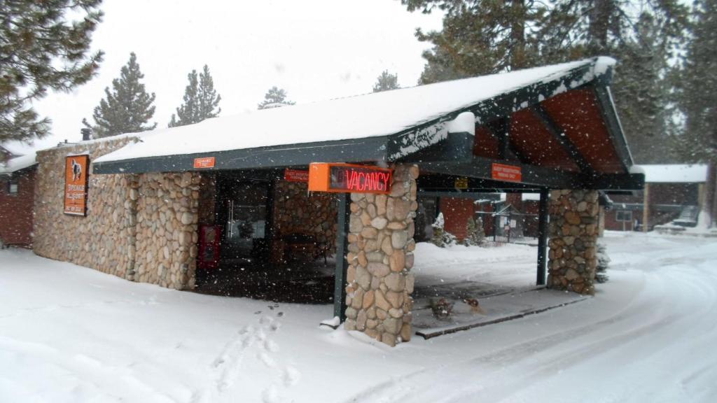 3 peaks resort beach club south lake tahoe for Animali domestici della cabina del lake tahoe