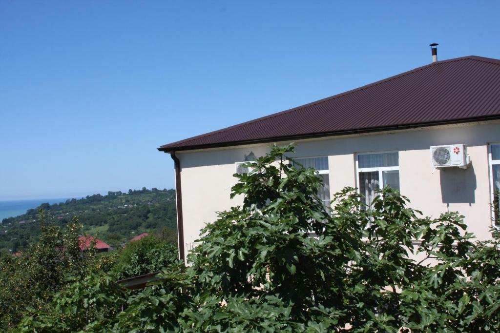 Абхазия новый афон частные гостиницы