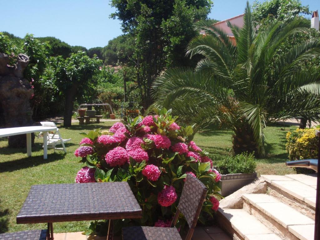 Hotel La Vierge Noire Sainte Maxime