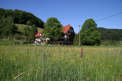 Hotel restaurant kohlenbacher hof waldkirch book your for Designhotel waldkirch