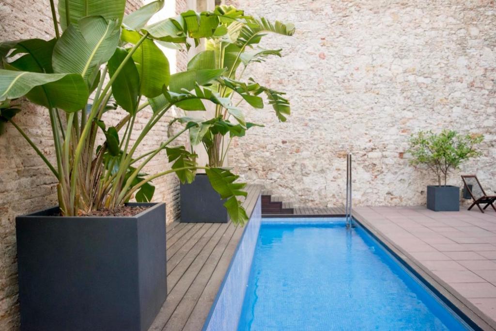בריכת השחייה שנמצאת ב-Onix Liceo או באזור