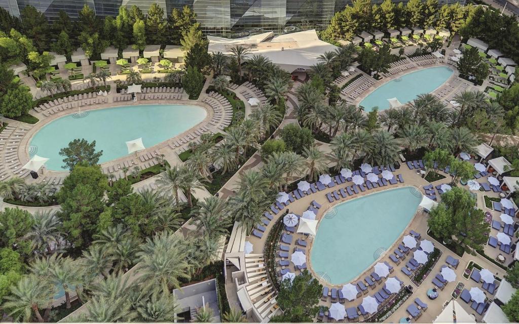 Una vista de la pileta en ARIA Resort & Casino o alrededores