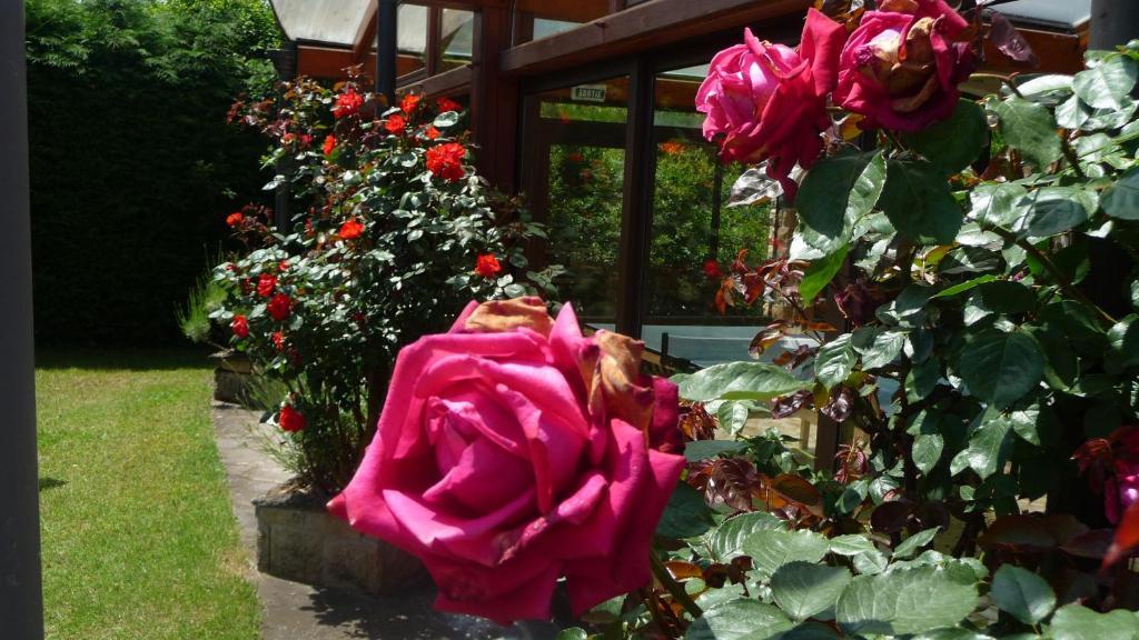Logis La Rose Des Vents