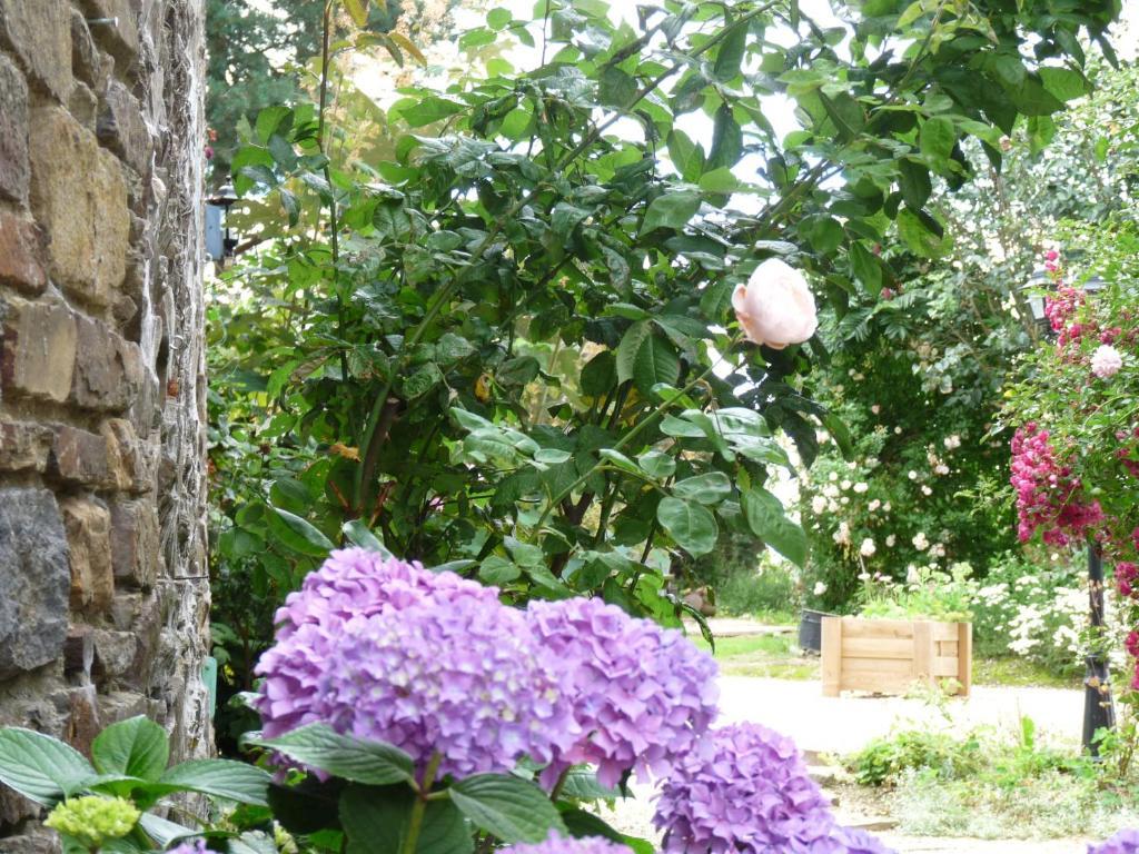Les fleurs de villepr tre pontorson informationen und for Fleurs online