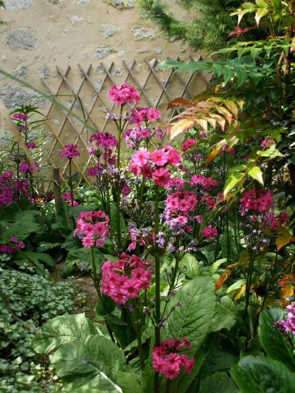 Jardin la bourdonni re mortagne au perche book your - Jardin tecina booking ...