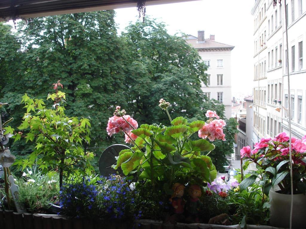 Chambres les soyeuses r servation gratuite sur viamichelin for 9 rue du jardin des plantes 69001 lyon