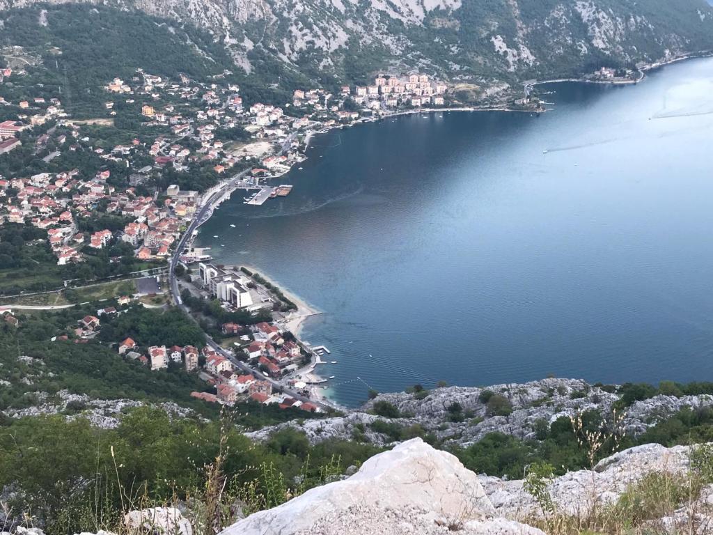 водительское рисан черногория фото развеяться, сменить