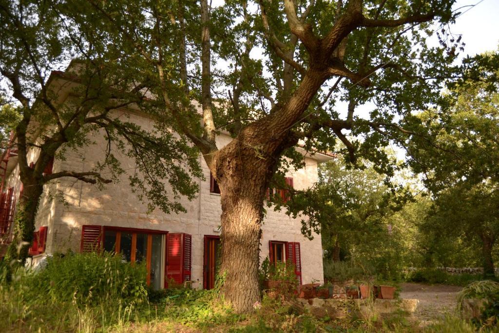 Casa de campo Par Tôt (Italia Cocolicchio) - Booking.com