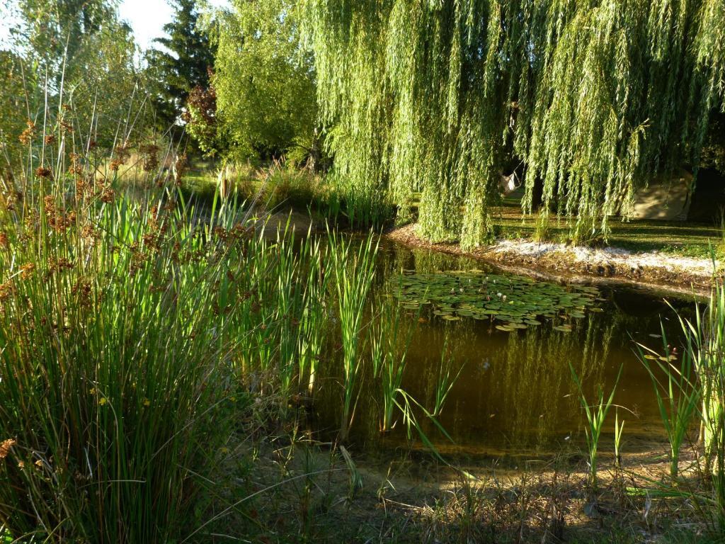 Aux jardins d 39 alice r servation gratuite sur viamichelin for Aux jardins