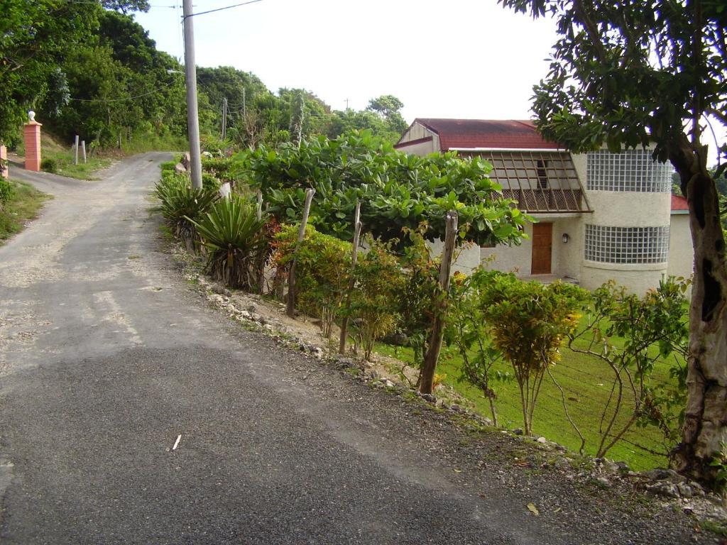 Car Rental In St Ann Jamaica